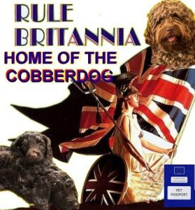 White britannia Passport